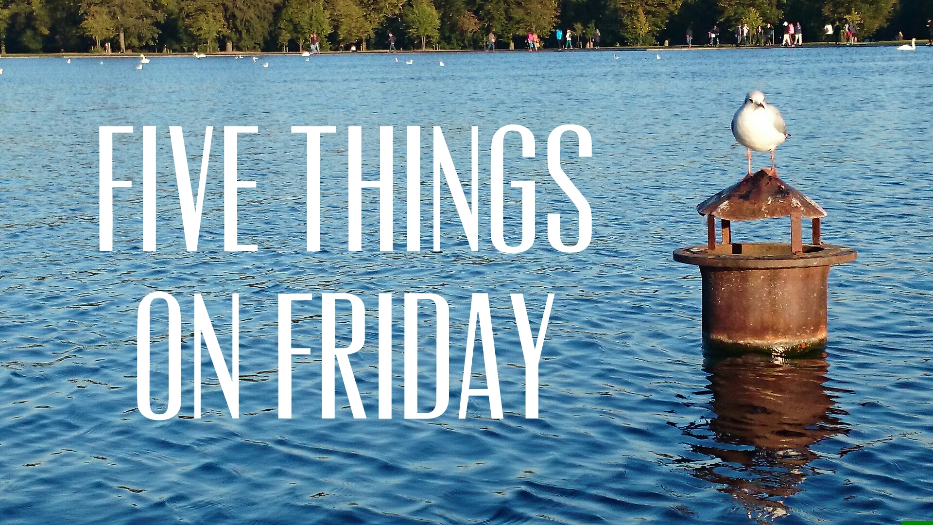Five things on Friday #93